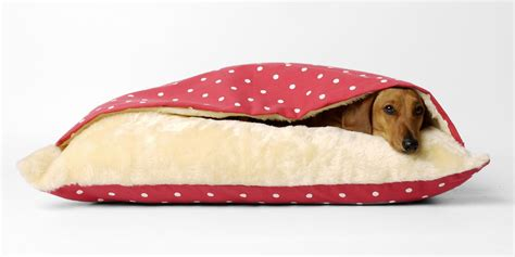 dachshund beds about tunnel dog beds