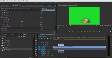 adobe premiere pro green screen adobe premiere pro green screen yapımı kolay etkili