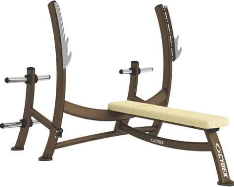 weight bench for free olympic bench press with weight storage cybex