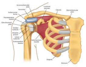 Causes of shoulder pain and popping synergy physical therapy and