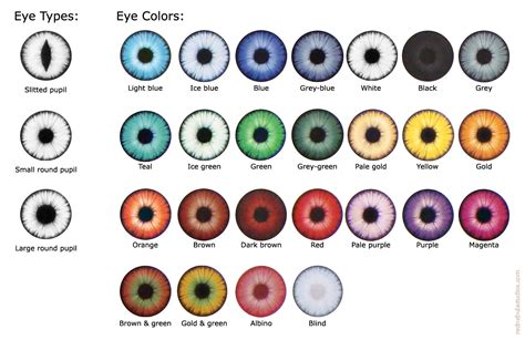 eye colors list different eye colors what if different eye colors