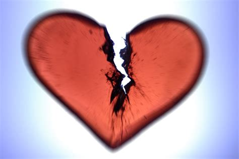 galo com galeria love broken world the 7 things i did to get over a big breakup and why research says they work vox