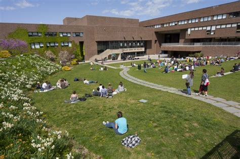 suny stony brook tuition room and board stony brook suny stony brook suny photos best college us news