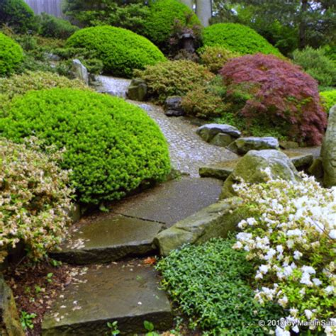 Hillside Garden Ideas Hillside Landscaping Design For The Actual Home