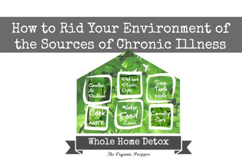 home detox the most important news