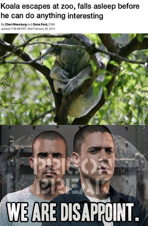 Prison Break Memes - prison break memes best collection of funny prison break