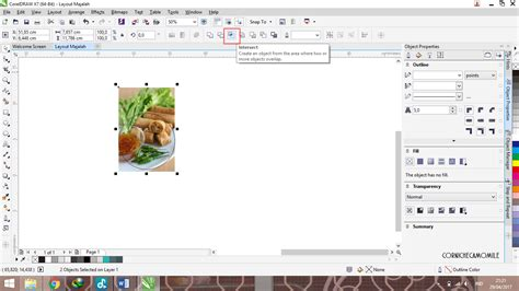 Tutorial Layout Majalah Corel | camomile tutorial cara membuat layout majalah pemula