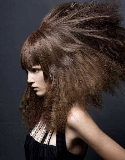 designer haircuts berkeley 56 best art hairstyle images on pinterest hair dos