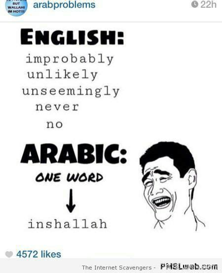 Funny Arab Memes In English - arab memes english vs arabic wattpad