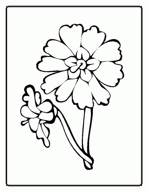 luau flower coloring page tropical flower coloring pages coloring home