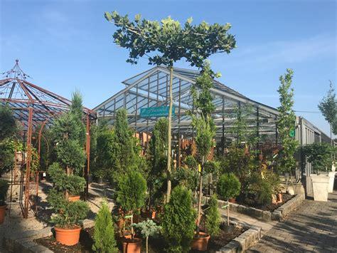 garten und landschaftsbau regensburg 2827 startseite marchl gartenbau landschaftsbau
