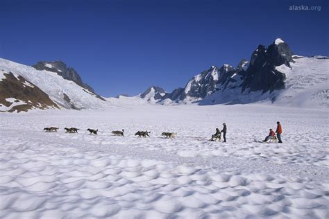 juneau sledding juneau sledding on the mendenhall glacier by helicopter 16