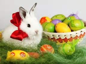 3 21 weekly roundup easter and spring break are here