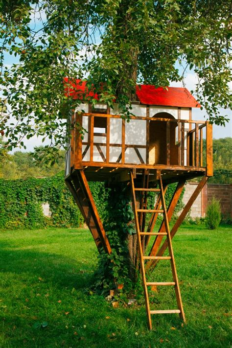 House Backyard Ideas Amazing Cool Tree House Ideas Home Design