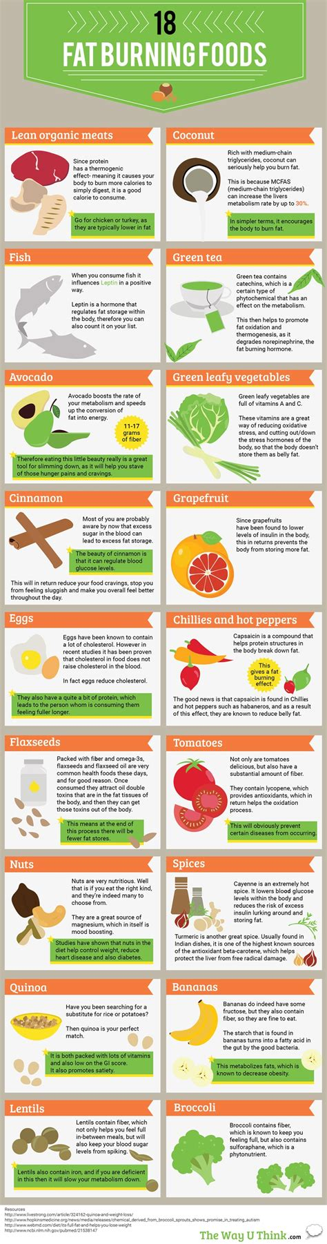 Burning Foods by 18 Burning Foods The Fitness My