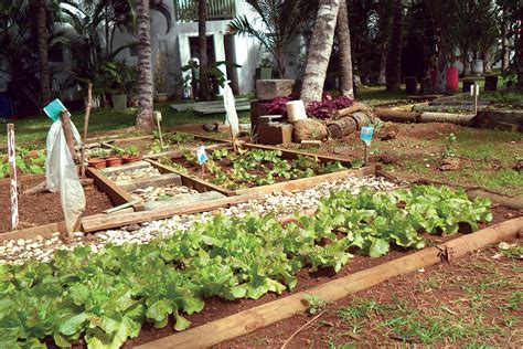 mauritius veranda grand baie into mauritius veranda resorts