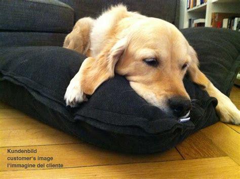 cuscini x cani ortopedico per cani cuscini con salutare imbottitura in