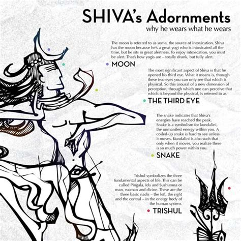 why tree meaning understanding the symbols of shiva