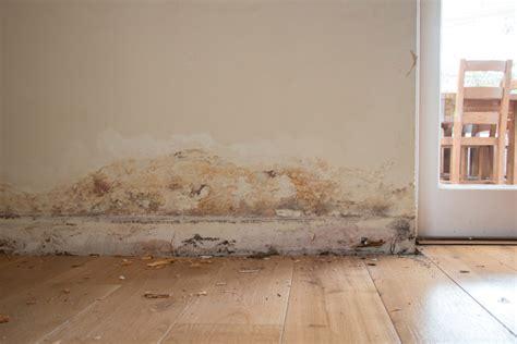 moisissure dans une chambre problme humidit maison affordable traiter les murs