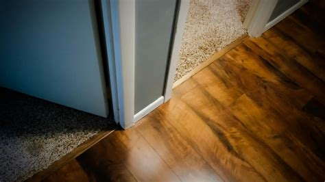How to Install Floor Transition From Carpet to Wood on