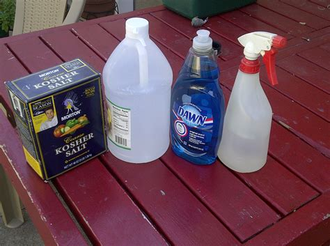 The Ideal Homemade Weed Killer   Grandmother Musings