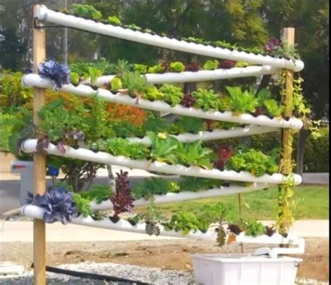 vertical aquaponics growing system business aquaponics