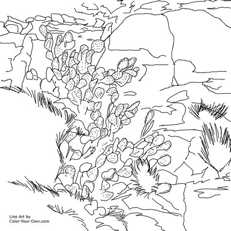 igneous rocks coloring pages coloring pages