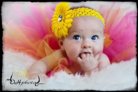 www baby brisbane photography studio oh photo wedding baby and