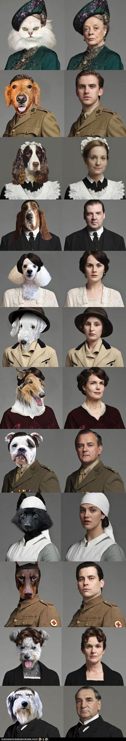 cats and dogs cast 17 best images about downton on seasons bingo and downton trailer