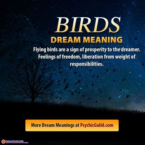 curtain dream meaning 25 best ideas about dream dictionary on pinterest dream
