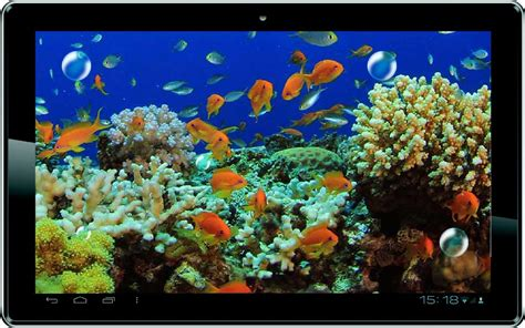 3d live wallpapers free live moving fish wallpaper wallpapersafari