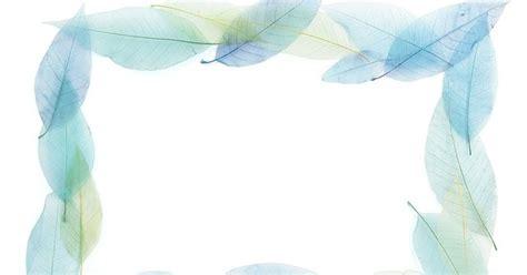 imagenes y fotos sin copyright imagenes sin copyright marco de hojas azules