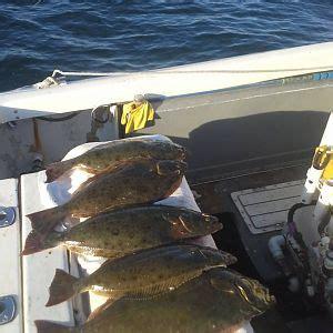 fishing boat bdo recipe halibut bloodydecks
