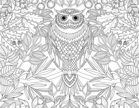 the secret garden coloring book target أختبارات شخصيه الصفحة 2 magazine paty