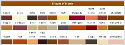 brown color names shades of brown the craft stylists copper