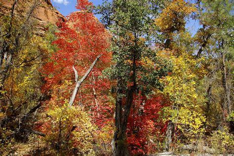 az color rock secret mountain wilderness