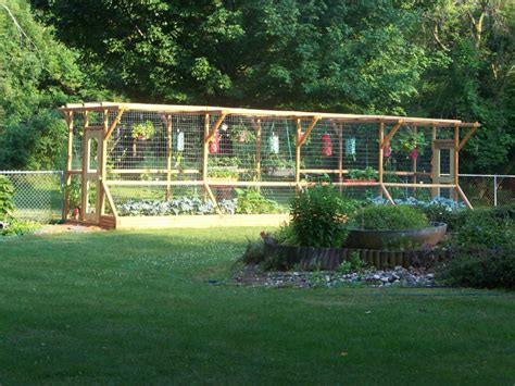 Vegetable Garden Netting Frame Garden Fence Ideas For Vegetable Garden Amazing Deer