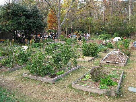 Community Garden Atlanta by Il Volto Verde Di Atlanta The Atlanta Experiment