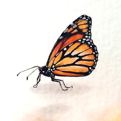 realistic little monarch butterfly tattoo design
