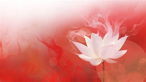 lotus desktop wallpaper lotus wallpapers wallpaper cave