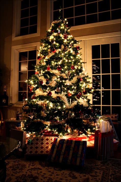 bright christmas tree pictures   images  facebook tumblr pinterest  twitter