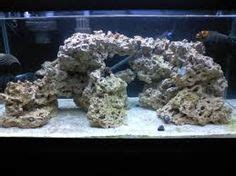 aquascaping reef search nano reef tank