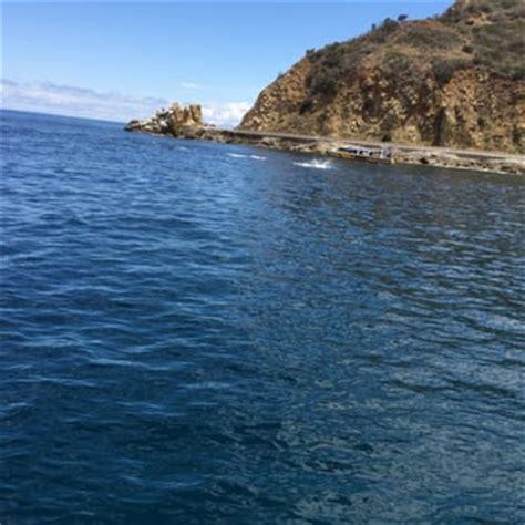 glass bottom boat avalon ca glass bottom boat tour 45 photos 30 reviews boat