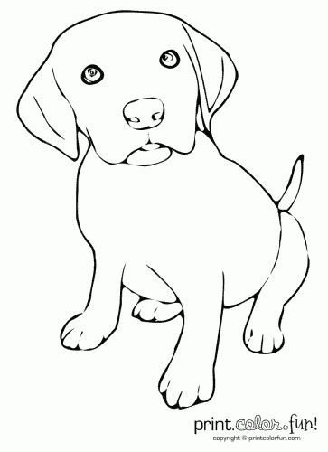 coloring pages of lab puppies cute puppy coloring page print color fun