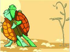 Animierte Tier Gifs: Schildkröten - Gif-Paradies Flaggen Der Welt