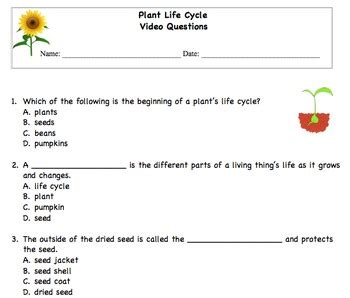 Questions Answers Plants plant cycle choice questions by