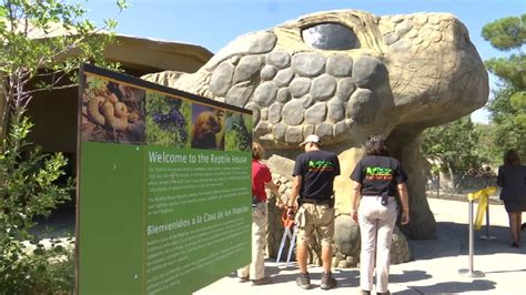 reptile house el paso zoo celebrates opening of new reptile house kdbc