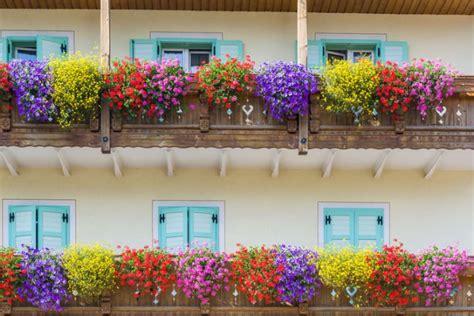 immagini terrazzi terrazzi arredati e fioriti foto