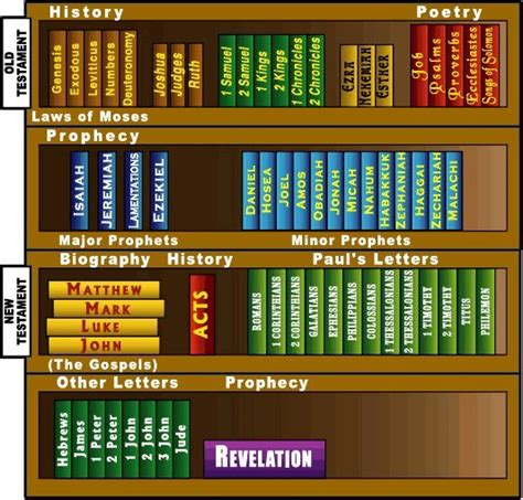 the book of bibles how were the 66 books of the bible chosen returning to genesis