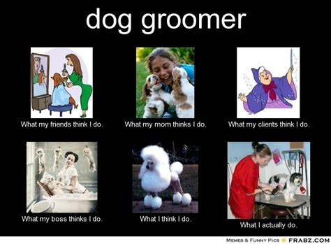 Dog Groomer Meme - dog groomer what people think i do what i really do perception vs fact